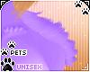 [Pets] Phir   shldr tuft