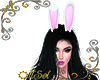 My Bunny Ears