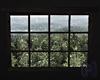 COZY Animated Window