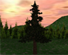 Resizable Pine Tree