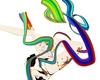scoliosis accesorie