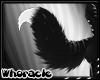 Romp Tail v5
