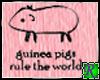 ~JRB~ Guinea Pig Rule