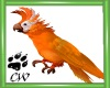 CW Animated Parrot