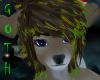 Sven reindeer eyes blue