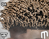 Rican Curly Frohawk - B