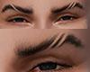 CHV Eyebrows