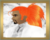 Phoenix Musasha Anim (M)