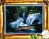 Two White Tiger's.1.