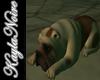 BENTLEY DOG LAYING