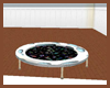 Animated Trampoline