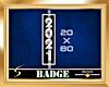 2021 Silver Vert. Badge