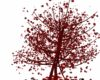 Red Falling Leaf Tree