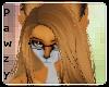 e Fox |H 2