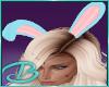 Easter Brat