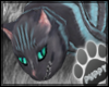 [Pup] Cheshire Cat Pet