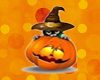 ~Nx~ Halloween Cat 6