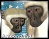 AM:: Monkeys Enhancer