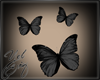 [Yel] Black buterfly