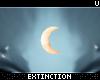 #wysh: moon bindi