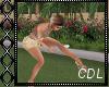 !C* Summer Frisbee Anim.