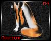 M! Calico Tail 4