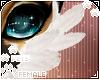 [Pets] Evy | cheek tuft