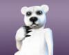 Polar Bear F