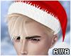 擾 Santa Blonde