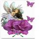 Mariposa flower