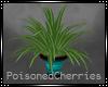 (PC) Cascade SpgFlrPlant