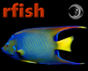 [rfish] Reef Fish
