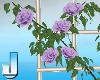 Fleuriste RoseFence Purp