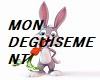 DEGUISSEMENT4