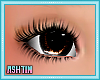 ! KID Rich Chocolate Eye