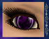 {A} Fusion Eyes ~ Orchid