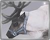 *Winter Reindeer*