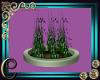 Derivable Plant