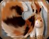 💎 Abby | Tail 2