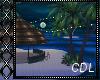 !C* Tiki Beach Party