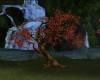 !Autumn Tree