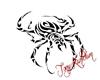 tatoo araignée /spider