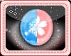 [N] 2Tone Winter/Spring