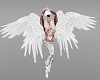 Male Angel Avatar