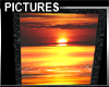 Animated Sunset Pictures