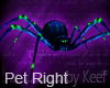 Gem Spider Pet, Right