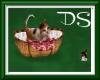 DS Cat & Mousse