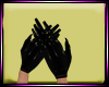 Dp Broken Gloves