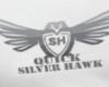 J2 Quick Silver Hawk T
