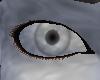 Stone Eyes [M]